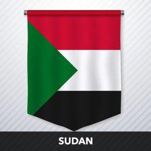Sudan Multiplayer Team Training Resellers